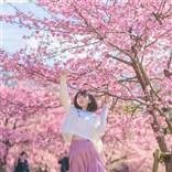 樱花开了 一起去看吗